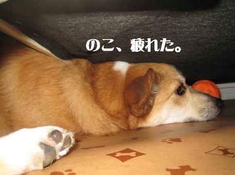 ソファー4.JPG